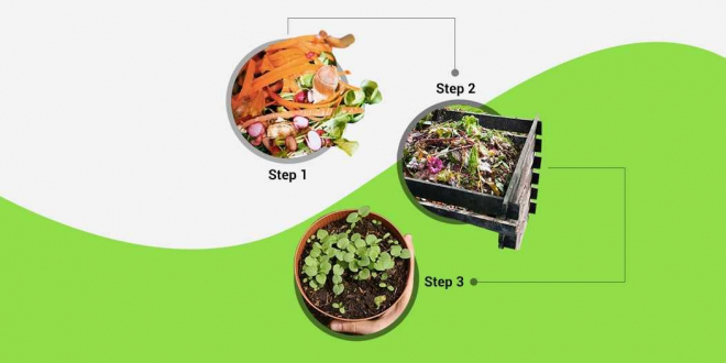 Fighting India's Garbage Crisis: All About Composting