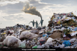 National Green Tribunal Directs Delhi Chief Secretary To Submit Quarterly Report On Solid Waste Management