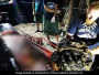 Plastic Pollution: Dead Whale In Philippines Ate 40 Kilogram Of Plastic