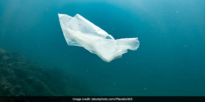 The ban would outlaw the use of single-use plastic bags at most stores, but would allow certain industries to continue using them