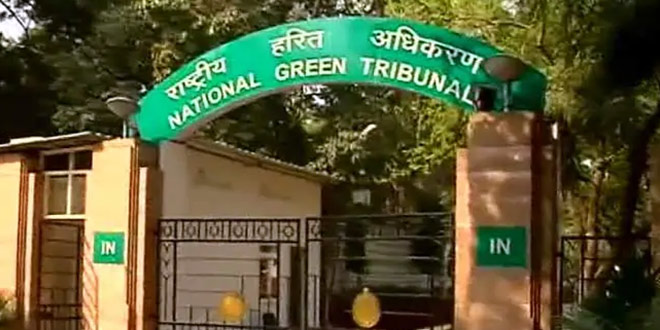 National Green Tribunal Forms Panel To Look Into Green Capping Of Landfill Sites Issue In Delhi