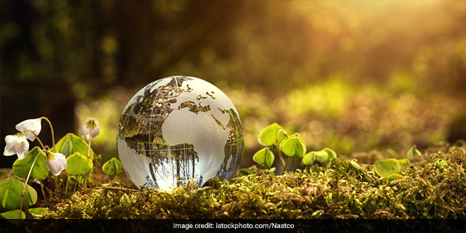 """This year's theme to celebrate the Earth Day is """"Protect Our Species"""" with the aim to raise awareness about the growing list of endangered species in the world"""