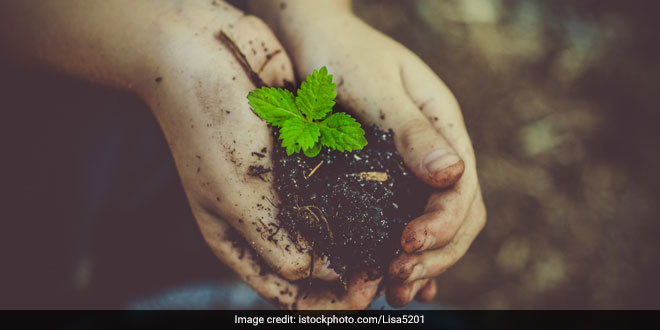 World Earth Day: Here Are Nine Eco-Friendly Alternatives For Things You Use Every Day
