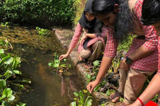 Sanitary Napkins From Aquatic Weed? This School Team From Kerala Creates Low Cost, Biodegradable Pads
