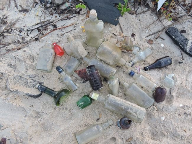 Megha started collecting these waste bottles near her home and from the beach in order to reduce trash from the planet