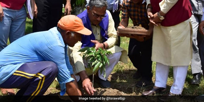 On World Environment Day, Uttarakhand Chief Minister Urges People To Plant Trees And Shun Plastic Bags