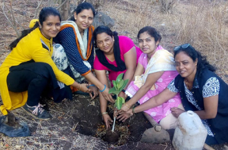 Tradition In Nashik Gets A Green Spin, Women Plant Banyan Saplings On Vat Savitri Pooja