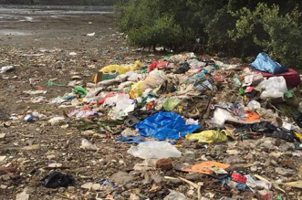 As Panaji Municipal Corporation Refuses To Treat Waste, Garbage Crisis Could Grip, Goa's 'Queen Of Beaches'