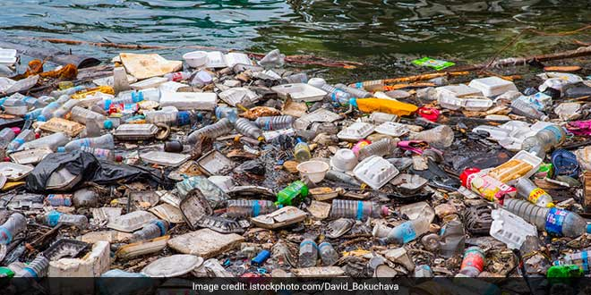 Plastic Ban: With Its Intensive Crackdown On Plastics, Maharashtra Reduced Plastic Waste Generation To Half