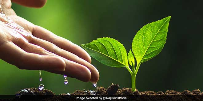 Green Campuses, The Next Big Thing In Rajasthan: Education Minister Mandates Tree Plantation In Colleges By Students