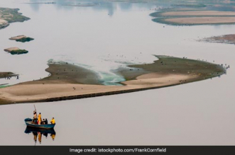 Newspaper Hawkers Take Charge Of Cleaning Yamuna River Banks In Delhi
