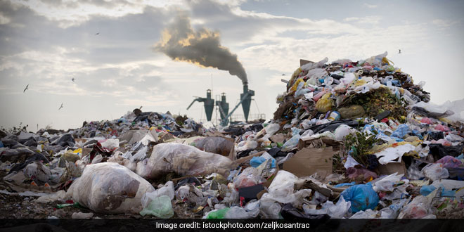 Clear 25 Lakh Tonne Waste At Bandhwari Landfill Site In 6 Months: National Green Tribunal To Haryana Government