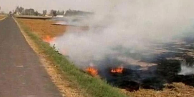 Punjab Farmers To Get 28,000 Agro-Machines From The State Government To Tackle Stubble Burning