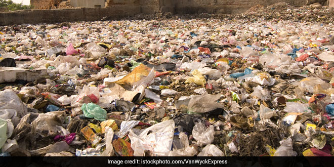 Tagore Garden Fruits And Vegetable Market First To Be Declared Plastic-Free: South Delhi Municipal Corporation