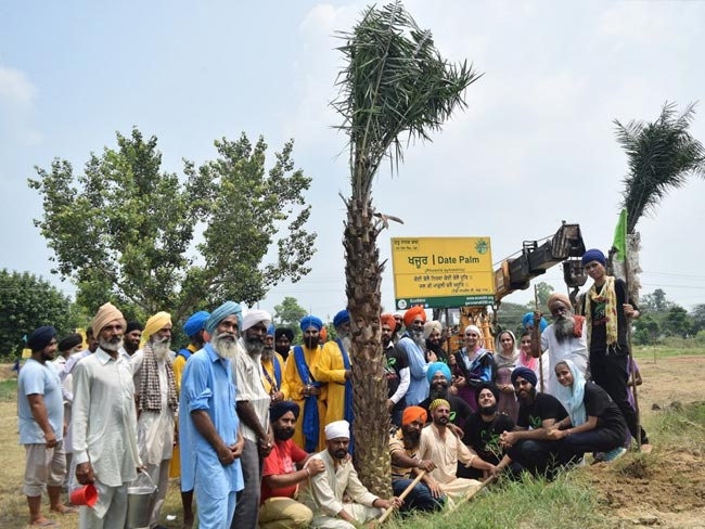 Happy Guru Nanak Jayanti 2019: Sikhs Commemorate The 550th Birthday Of Guru Nanak Dev By Making The World Greener