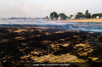 Uttar Pradesh Man Finds Shredding Solution To Stubble Burning