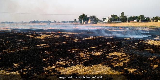 Uttar Pradesh Man Finds Shredding Solution To Stubble Burning