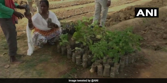 Here's How A Small District In Chhattisgarh Has Effectively Recycled More Than 3000 Waste Plastic Bottles