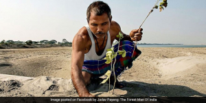 Forest Man of India: A Farmer From Assam Has Grown A Forest On Barren Land By Planting Trees For Last 40 Years
