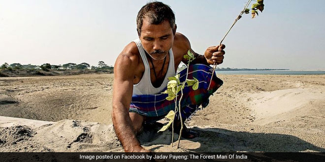 Jadav Molai Payeng was 16 years old in 1979, when he witnessed a large number of dead snakes due to excessive heat after floods washed them onto the tree-less sandbar Assam