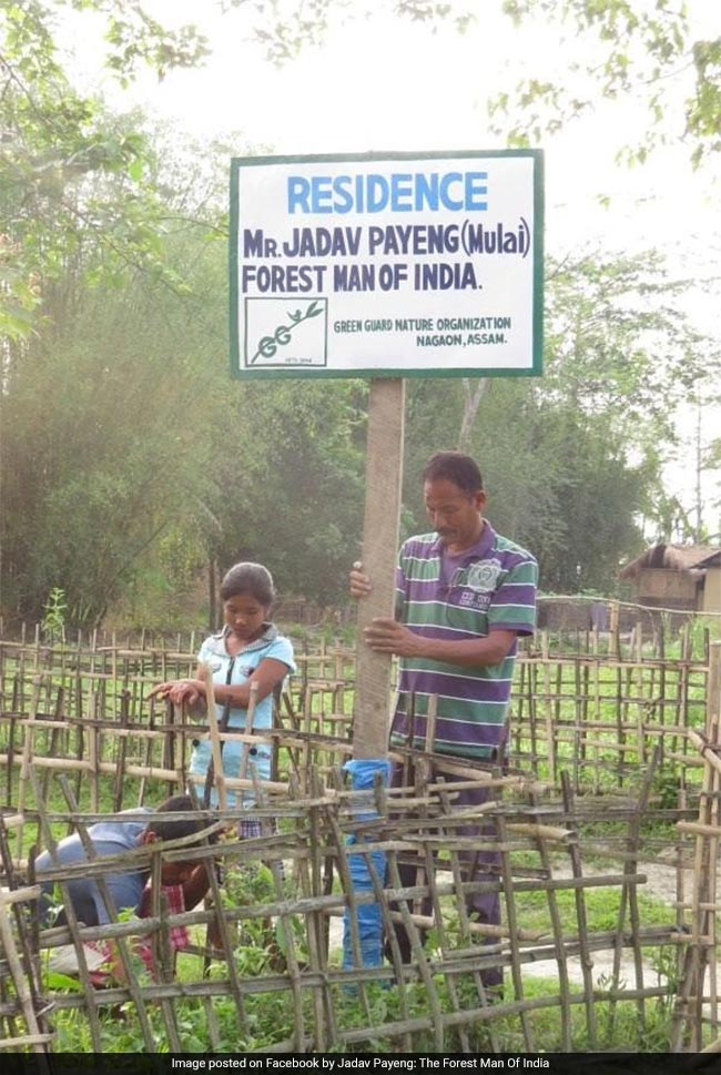 While his personal life also progressed with marriage and five kids, Mr. Payeng did not forget about his mission of planting trees