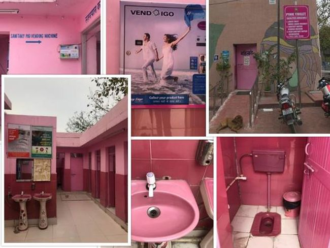 The pink toilet located in South Delhi's Saket, near PVR Anupam