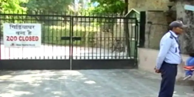 Coronavirus: Zoos Face Severe Hardships In Arranging Food, Water For Animals Amid Lockdown