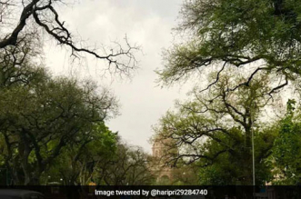 Air Pollution In India Improves Amid Lockdown Due To Coronavirus
