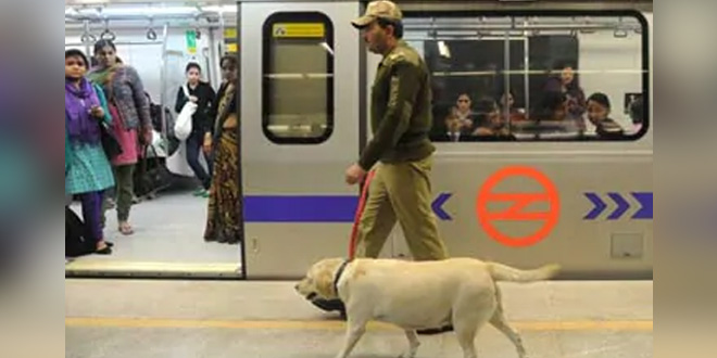 Indo-Tibetan Border Police Hands Over 2,000 Personal Protection Kits, Masks To Central Industrial Security Force's Delhi Metro Unit