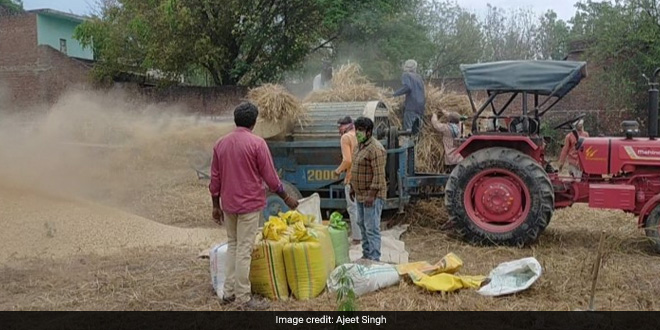 Can COVID-19 Outbreak Cause Food Crisis As Farmers Struggle To Harvest, Sell Produce, Sow Next Crop Amid Restrictions?