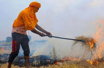 Stubble Burning In Punjab May Worsen Air Quality