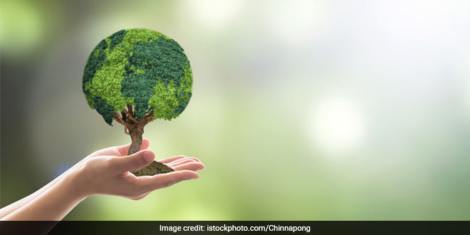 World Environment Day 2020: All You Need To Know