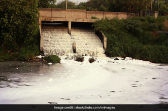 Detergent In Sewage Responsible For Toxic Foam In Yamuna: Delhi Pollution Body To The Green Panel