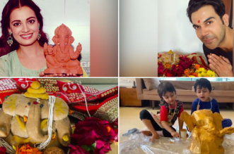 Ganesh Chaturthi 2020: Bollywood Celebrates With Eco-Friendly Ganapati Idols And Messages To Stay Safe In Times Of COVID