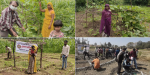 POSHAN Maah: Nutri-Gardens Adopted To Improve Dietary Diversity And Nutritional Status Of Undernourished Children In Udaipur