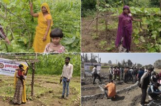 Nutri-Gardens Adopted To Improve Dietary Diversity And Nutritional Status Of Undernourished Children In Udaipur