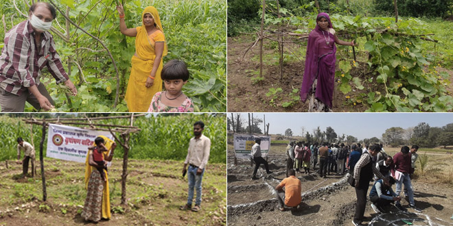 Nutri Gardens Adopted To Improve Dietary Diversity And Nutritional Status Of Undernourished Children In Udaipur