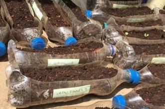 Environmentalist In Jammu Creates Vertical Gardens Using Plastic Bottles