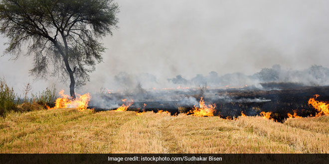 Sensitise Farmers Against Stubble Burning, Which Can Worsen COVID Situation: Punjab Minister Aruna Chaudhary To Panchayats