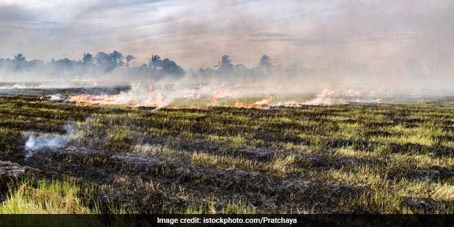 Stubble Burning Continues In Parts Of Punjab
