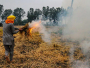 Steep Rise In Stubble Burning Incidents In Punjab This Year