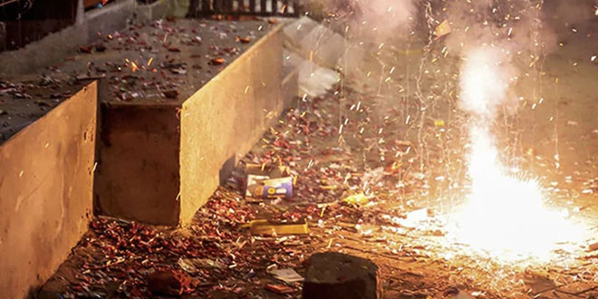 Ensure No Firecrackers On Christmas, New Year In Delhi: Pollution Watchdog