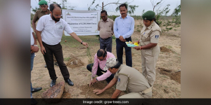 Amid The COVID-19 Crisis, Grow-Trees.Com Planted 26 Lakh Trees And Created Jobs
