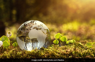 Earth Day 2021: How Can We Restore Our Earth?