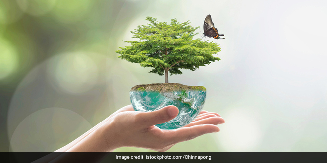Decade on Ecosystem Restoration is a global mission to revive billions of hectares, from forests to farmlands, from the top of mountains to the depth of the sea
