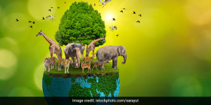 World Environment Day 2021: Ministers And Celebs Urge Their Followers To Restore The Ecosystem