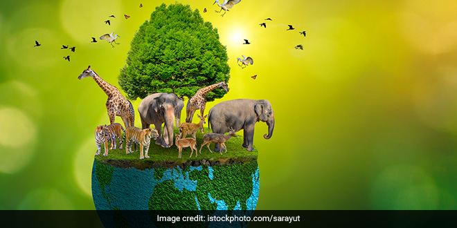 Living in harmony with nature has been at the centre of Indian ethos: President Ram Nath Kovind on World Environment Day