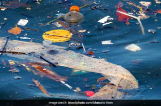 World Oceans Day 2021: Centre Launches A Two-Month Long 'Plastic Hackathon' Campaign On Plastic Waste Management To Save Oceans