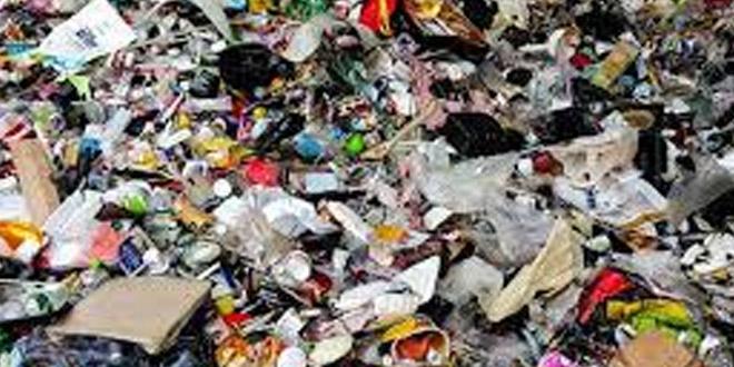Delhi Artist Makes Artwork With Plastic, Diverts 250 Kg From Landfills