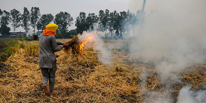 Air Quality Commission Asks NCR States To Adopt ISRO's Protocol For Farm Fire Estimation